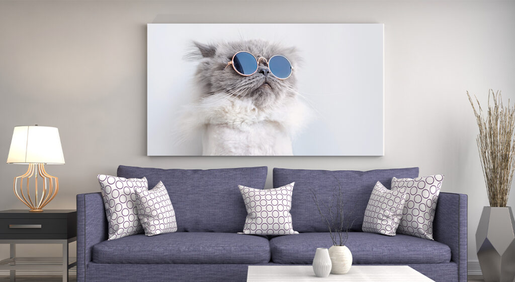 Canvas print of cat in round sunglasses hung on beige living room wall behind dark grey couch with throw pillows.